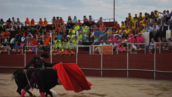 Gran ambiente en Navas del Rey, volcada con los toros tanto en lo cultural y en lo taurino / Foto: J. Roch